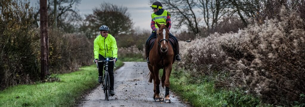 Horse Rider and Cyclist